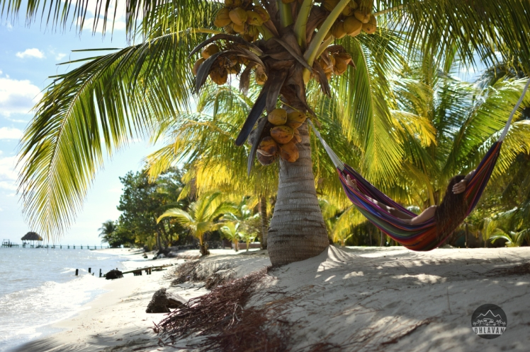 Ohlavan, Belize, Belice, Placencia, Mariposa, Central America, Centroamérica, roadtrip, truck camper, adventure, hammock, hamaca