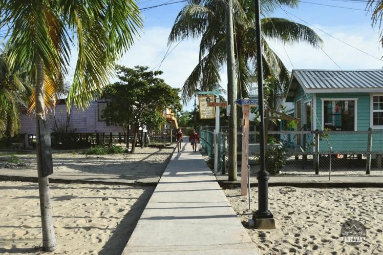 Ohlavan, Belize, Belice, Placencia, Mariposa, Central America, Centroamérica, roadtrip, truck camper, adventure, Nikon