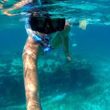 Ohlavan, Belize, Belice, Cay Caulker, Cayo, island, Caribbean, Caribe, Central America, Centroamérica, roadtrip, truck camper, adventure, snorkel