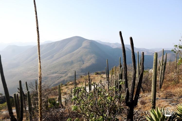 Ohlavan, roadtrip, adventure, couple, pareja, aventura, viaje, viajar, travel, México, Mexico, Hierve el Agua, Oaxaca, overland