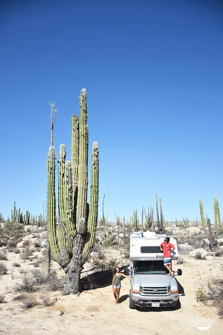 Ohlavan, truckcamper, overland, Central America, Panamericana, México, Baja California, cactus, roadtrip, adventure, Basque, Haitian