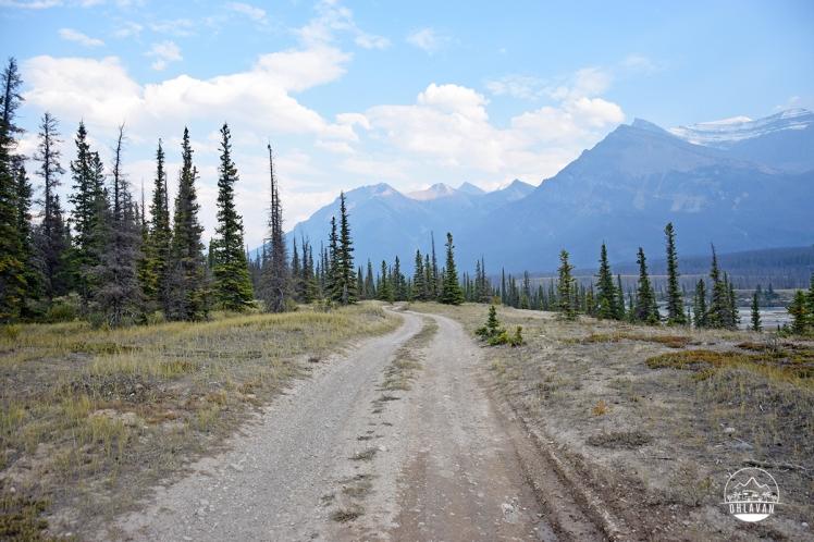 Ohlavan, truckcamper, roadtrip, Panamerican Highway, Panama to Alaska, Basque, Haitian, overland, adventure, Canada, Alberta, The Rockies, Icefield Parkway